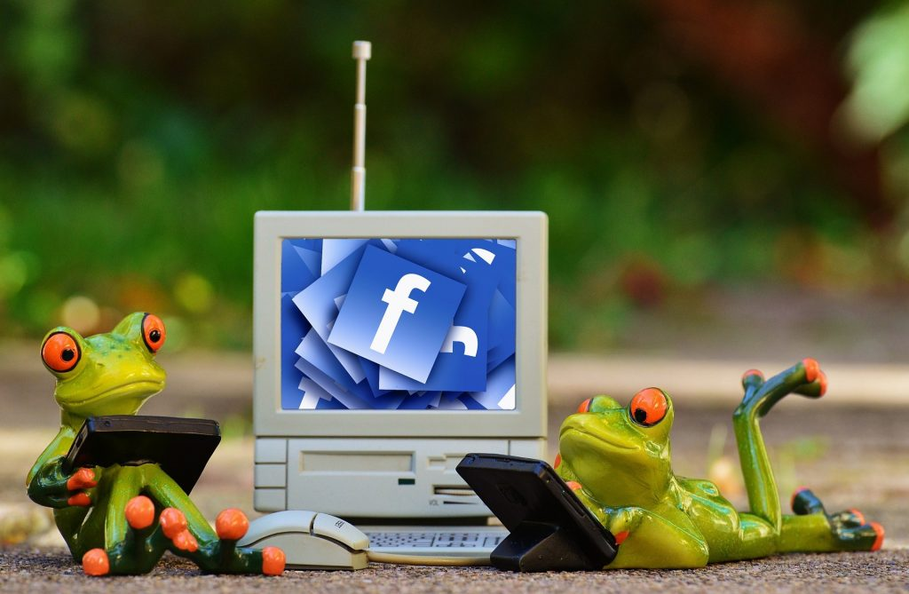 facebook libra frogs